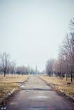 Αλέα στο παλαιό πάρκο Στοκ φωτογραφίες με δικαίωμα ελεύθερης χρήσης