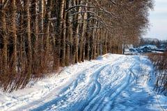 Αλέα τομέων χειμερινών δρόμων στοκ φωτογραφίες