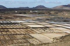 Αλατισμένες εργασίες Janubio, Lanzarote Στοκ Φωτογραφία