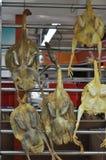 Αλατισμένες κοτόπουλο και πάπιες Στοκ Εικόνες