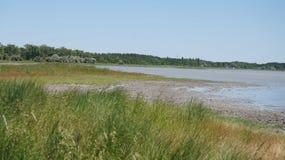 Αλατισμένη λίμνη της θερινής Ουκρανίας Στοκ φωτογραφία με δικαίωμα ελεύθερης χρήσης