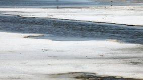 Αλατισμένη λίμνη φιλμ μικρού μήκους
