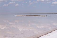 Αλατισμένη λίμνη Στοκ Εικόνα