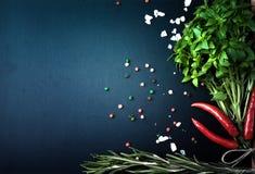αλατισμένη βανίλια καρυκευμάτων δεντρολιβάνου πιπεριών φύλλων χορταριών σκόρδου κόλπων cardamon βασιλικός, κόκκινο πιπέρι, αλάτι  στοκ εικόνες