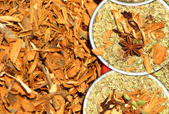 αλατισμένη βανίλια καρυκευμάτων δεντρολιβάνου πιπεριών φύλλων χορταριών σκόρδου κόλπων cardamon καφετής κίτρινος Στοκ Φωτογραφίες