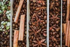 αλατισμένη βανίλια καρυκευμάτων δεντρολιβάνου πιπεριών φύλλων χορταριών σκόρδου κόλπων cardamon Στοκ εικόνα με δικαίωμα ελεύθερης χρήσης