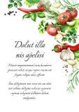 αλατισμένη βανίλια καρυκευμάτων δεντρολιβάνου πιπεριών φύλλων χορταριών σκόρδου κόλπων cardamon αρχαίο watercolor εγγράφου ανασκό διανυσματική απεικόνιση