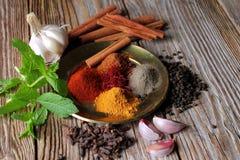 αλατισμένη βανίλια καρυκευμάτων δεντρολιβάνου πιπεριών φύλλων χορταριών σκόρδου κόλπων cardamon Συστατικά τροφίμων και κουζίνας Στοκ Φωτογραφία