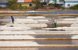 Αλατισμένη παραγωγή, Βιετνάμ Στοκ φωτογραφία με δικαίωμα ελεύθερης χρήσης