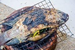 Αλατισμένος-εφελκιδώδη ψημένα στη σχάρα ψάρια στοκ φωτογραφία με δικαίωμα ελεύθερης χρήσης