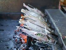 Αλατισμένος-εφελκιδώδη ψημένα στη σχάρα ψάρια Στοκ Φωτογραφίες