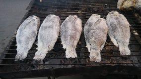 Αλατισμένος-εφελκιδώδη ψημένα στη σχάρα ψάρια Στοκ εικόνα με δικαίωμα ελεύθερης χρήσης