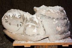 Αλατισμένο άγαλμα που αντιπροσωπεύει μια επίδειξη Στοκ Εικόνες