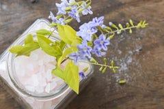 Αλατισμένο άρωμα SPA όλων των τροφίμων δερμάτων λουλουδιών με τα πορφυρά λουλούδια Στοκ φωτογραφία με δικαίωμα ελεύθερης χρήσης
