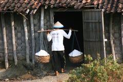 Αλατισμένο αγρόκτημα στοκ φωτογραφία