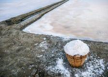 Αλατισμένο καλάθι εκτός από τον αλατισμένο τομέα Στοκ Φωτογραφία