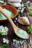 αλατισμένο σαπούνι λουτ& Στοκ εικόνες με δικαίωμα ελεύθερης χρήσης