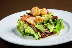 6α λαχανικά σαλάτας οστράκων Στοκ εικόνες με δικαίωμα ελεύθερης χρήσης
