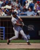 Αλβέρτος Belle Baltimore Orioles Στοκ φωτογραφίες με δικαίωμα ελεύθερης χρήσης