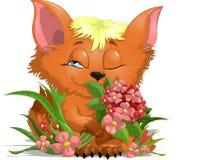 Αλεπού με τα λουλούδια Στοκ Φωτογραφίες