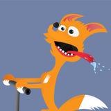 Αλεπού σε ένα ποδήλατο ελεύθερη απεικόνιση δικαιώματος
