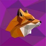 αλεπού Στοκ εικόνα με δικαίωμα ελεύθερης χρήσης