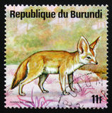 Αλεπού Fennec ή fennec zerda Vulpes, ζώα Μπουρούντι σειράς, cir Στοκ Εικόνες