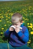 Αλλεργία άνοιξη Στοκ εικόνες με δικαίωμα ελεύθερης χρήσης