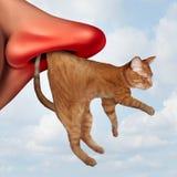 Αλλεργία γατών διανυσματική απεικόνιση