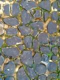 Αλεσμένος με πέτρα Στοκ Εικόνες