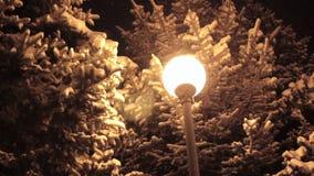αλεών μπλε φαναριών νύχτας χειμώνας τόνου πάρκων να λάμψει καλυμμένος Πυροβολισμός νύχτας φιλμ μικρού μήκους