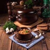 Αληθινή σούπα βόρειων γερμανική πλαστή χελωνών με τα μανιτάρια στοκ εικόνα με δικαίωμα ελεύθερης χρήσης