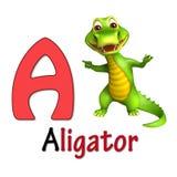 Αλλιγάτορας με το alphabate Στοκ εικόνα με δικαίωμα ελεύθερης χρήσης