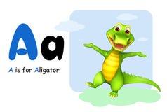 Αλλιγάτορας με το alphabate Στοκ φωτογραφία με δικαίωμα ελεύθερης χρήσης