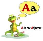 Αλλιγάτορας με το alphabate Στοκ Φωτογραφίες