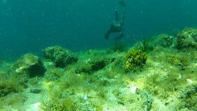 αλιεία λογχών ατόμων υποβρύχια στη ασφυξία φιλμ μικρού μήκους