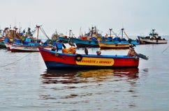 Αλιεία πουλιών Στοκ Εικόνες
