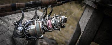 Αλιεία των εξελίκτρων στις ράβδους Στοκ εικόνες με δικαίωμα ελεύθερης χρήσης