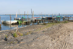 Αλιευτικά σκάφη, από Po τη λιμνοθάλασσα εκβολών ποταμών στο λιμάνι Caleri Στοκ Εικόνα