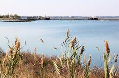 Αλιευτική βιομηχανία Valli Di Comacchio, Ιταλία Στοκ Φωτογραφία