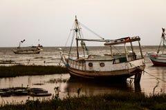 Αλιευτικό σκάφος του Αμαζονίου Στοκ Φωτογραφίες