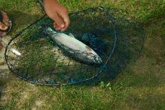 Αλιεύοντας αλιεία Στοκ φωτογραφίες με δικαίωμα ελεύθερης χρήσης