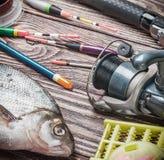 Αλιεύοντας εξοπλισμός και αλιευμένο bream Στοκ Εικόνες