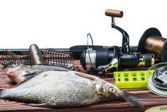 Αλιεύοντας εξοπλισμός και πιασμένα ψάρια στον πίνακα που απομονώνεται Στοκ εικόνα με δικαίωμα ελεύθερης χρήσης