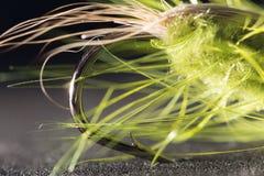 αλιεύοντας μύγα Κινηματογράφηση σε πρώτο πλάνο Στοκ Φωτογραφίες