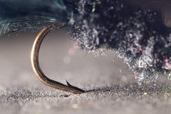 αλιεύοντας μύγα Κινηματογράφηση σε πρώτο πλάνο Στοκ Εικόνες