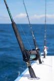 Αλιεύοντας ράβδοι και εξέλικτρα στοκ εικόνες