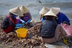 αλιεύοντας χωριό ΝΕ mui Στοκ φωτογραφίες με δικαίωμα ελεύθερης χρήσης