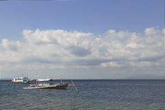 Αλιεύω-χαστούκι Στοκ εικόνες με δικαίωμα ελεύθερης χρήσης
