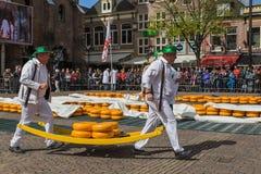 Αλκμάαρ, Κάτω Χώρες - 28 Απριλίου 2017: Μεταφορείς τυριών στο tradit Στοκ Φωτογραφία
